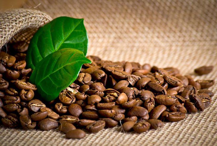 cà phê ngon nhất thế giới