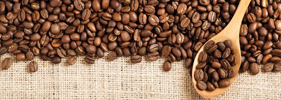 Nguồn hàng cafe - điểm dẫn đến sự thành công